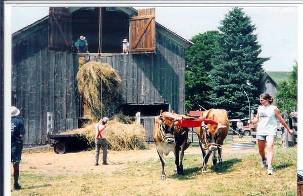 Loading hay into the barn with 2yr old Paul and Si...