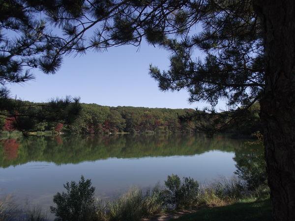 Lake @ Cheesequake State Park, NJ
