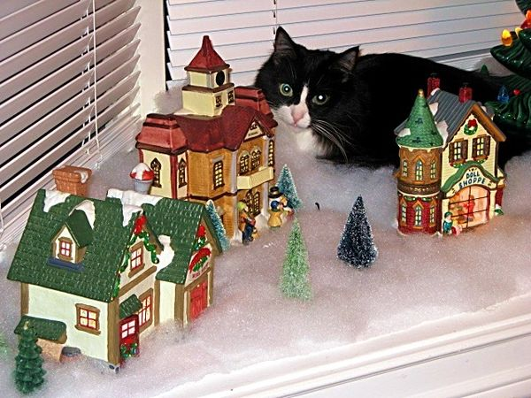 In Our Christmas Village...