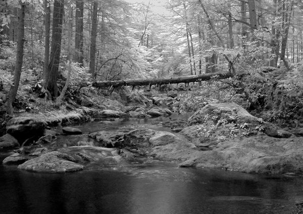 Clark's Creek, Greene County TN...