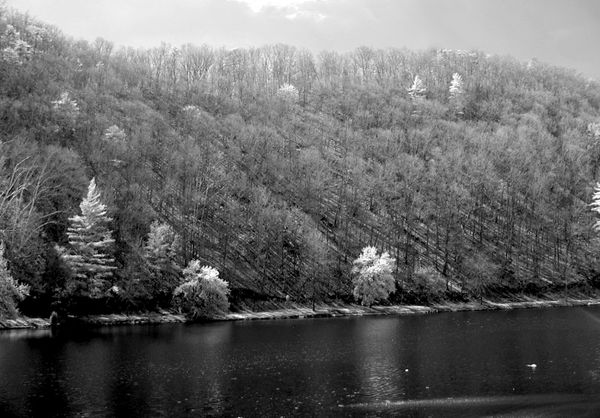 Steele Creek Park, Bristol TN...