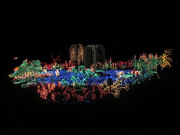 Christmas Lights Botanical Gardens Bellevue Wa