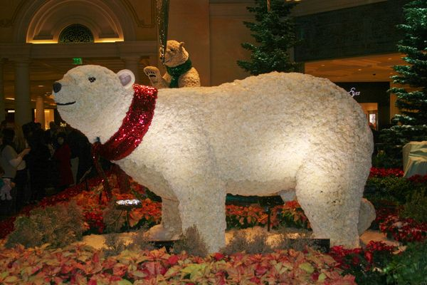 the polar bears are made of flowers and they are constantly being watered from inside hope