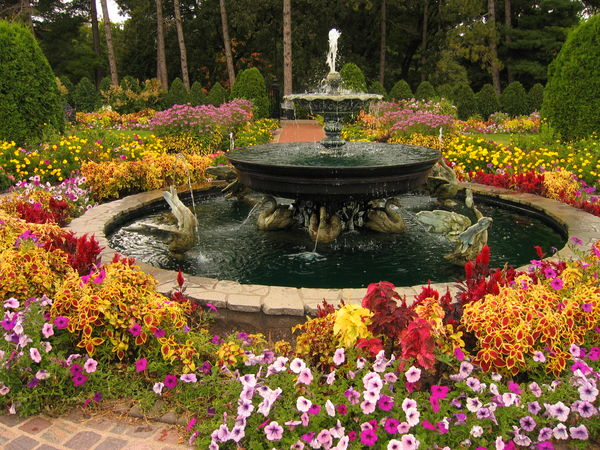 awesome flower garden in minn
