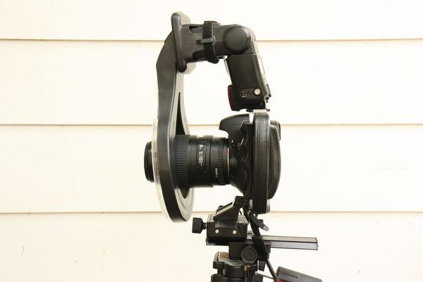 Canon 7D w/ Canon Macro E F 100-mm f/2.8 USM on fo...
