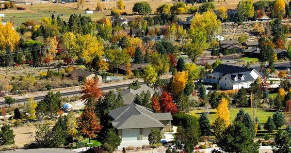 fall colors  Genoa, Nevada...