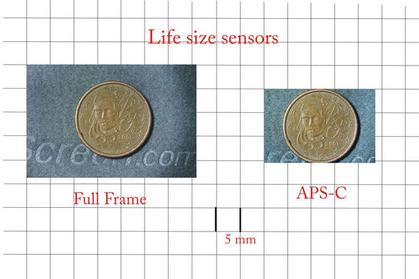 Image #4 - 105-mm macro lens at MFD on D800 (Full ...