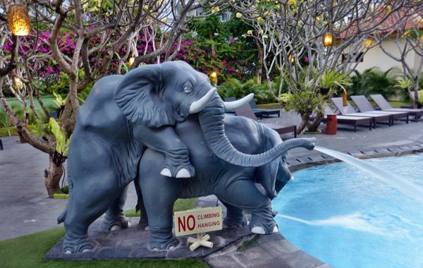 Swimming Pool Aeration : Balinese pool aerator