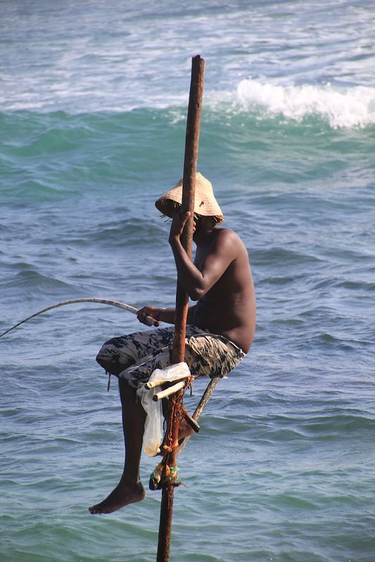Stilt fisherman...