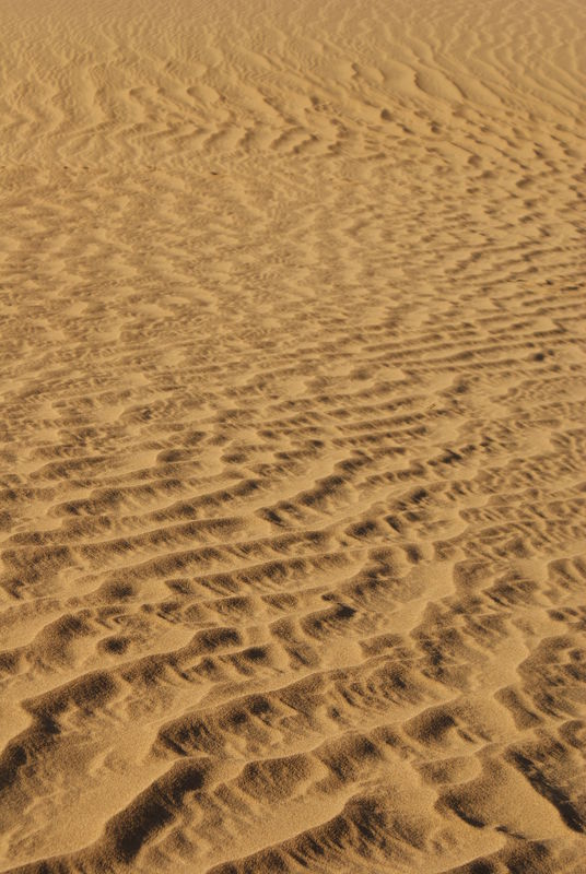 Death Valley sand patterns...