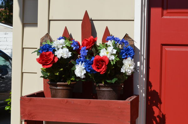 Red, white and blue flowers...