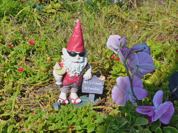 Beach yard gnome ready to party...