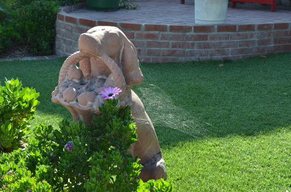 Yard art dog w/cobweb...