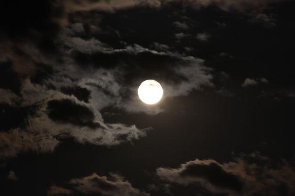 Terrible Moon Shots