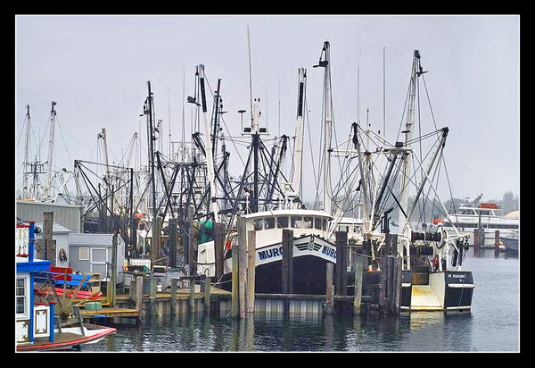 Point pleasant new jersey fishing boats for Point pleasant fishing