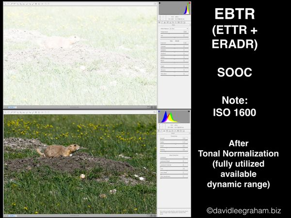 4. EBTR, SOOC VS. Tonally Normalized...