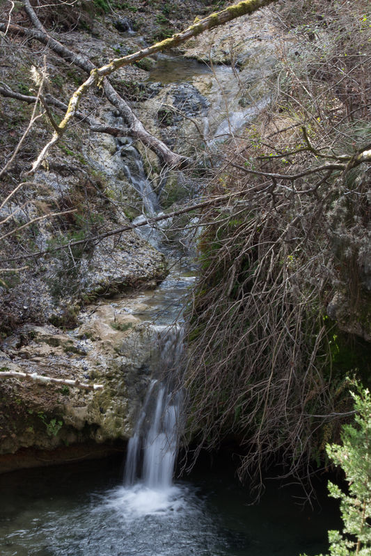 Years Holliday Perdernales Falls State Park