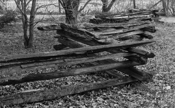 Split Rail Fence Black And White Or Color