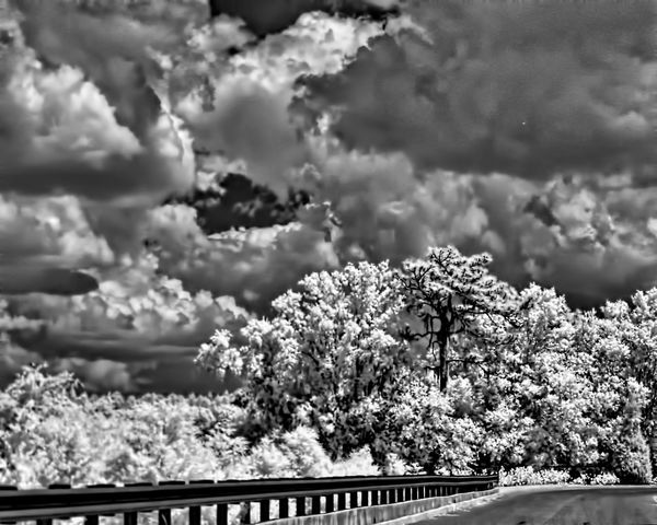 Canon G2 DIY Converted to IR...