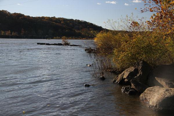 Susquehanna River at Falmouth, Pa....
