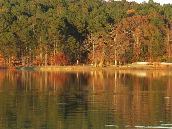 plantera ridge golf course looked so pretty in the...
