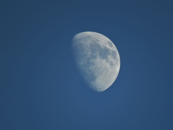 i had fun trying to shoot the moon....