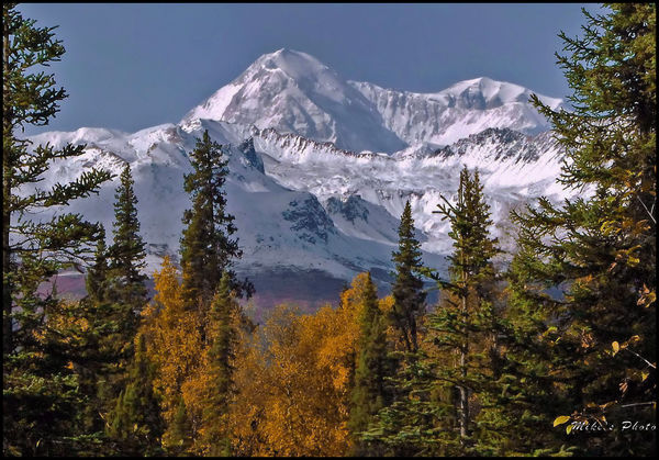 Mount Denali on a clear day....