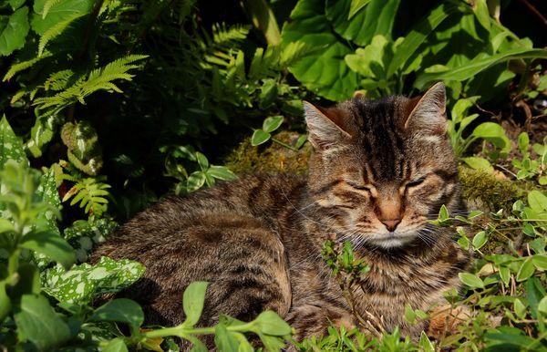 Sleepyhead...