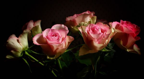 Roses in the hall...