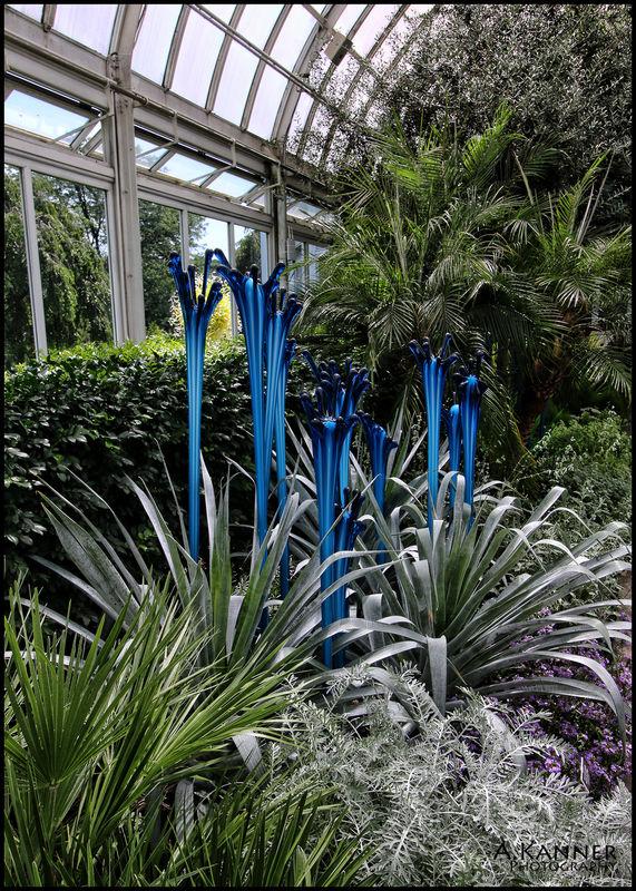 New York Botanical Gardens Chihuly Exhibit Part 4