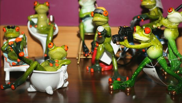 Photofrog pinup shoot...