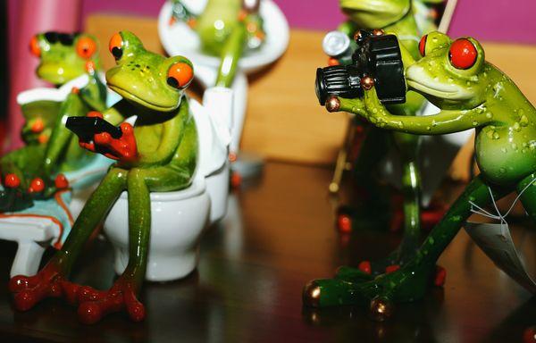 Photofrog strikes again!...