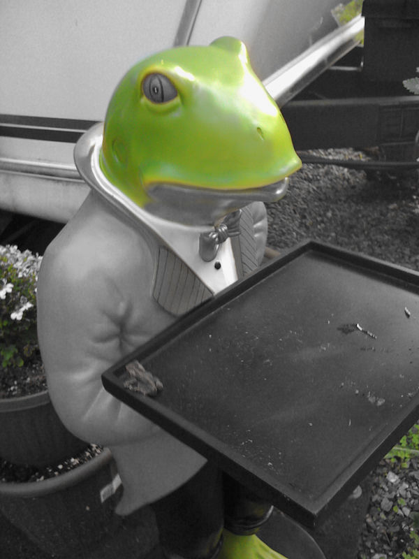 Check out the live toad on the ceramic frog's tray...