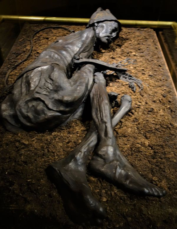 (2) Tollund Man is a naturally mummified corpse of...