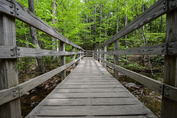 Walking Bridge, somewhere in NH...