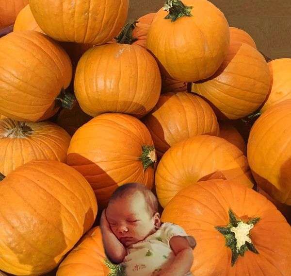 Babe Asleep in the Pumpkins...