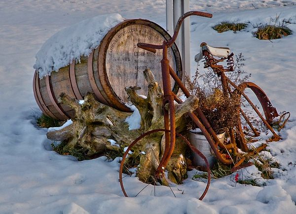 I see a barrel, an old bike, a sap bucket, a stump...