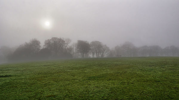 A foggy day in Taylor park,St Helens England...