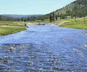 Fly Fishing the Firehole...