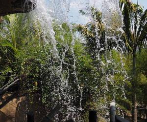 behind the waterfall Safari park SD...