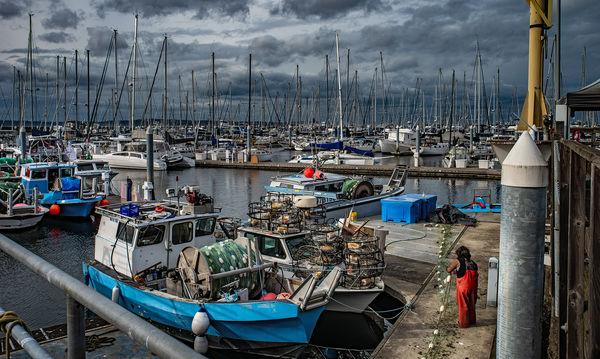 Preparing The Nets - Shilshole Marina...