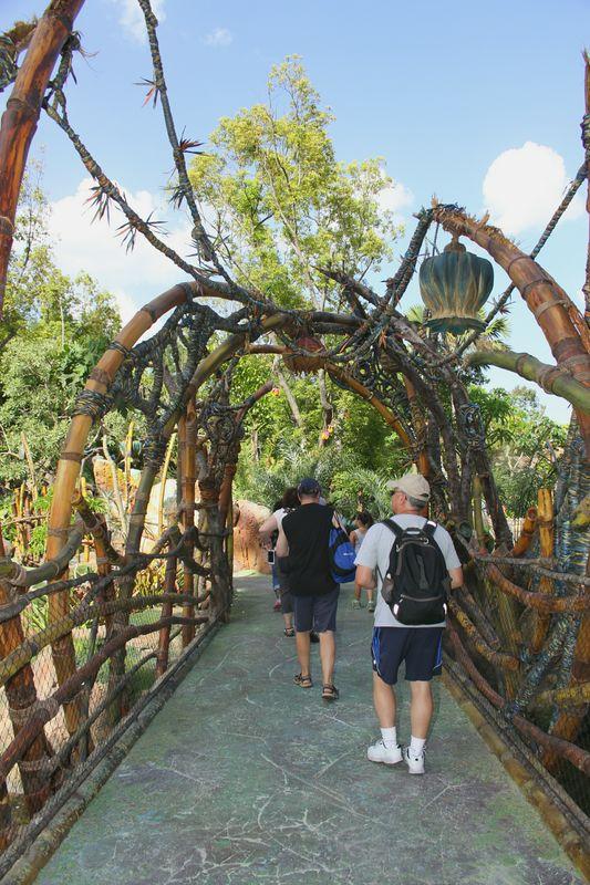 Bridge at Disney's Pandora....