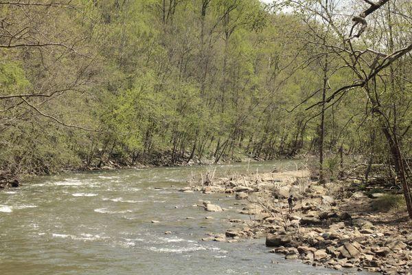 The river runs thru the Patapsco valley...