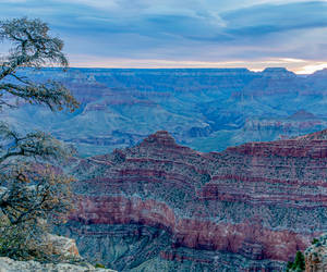 Grand Canyon Nat'l Park the following morning when...