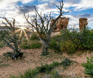 Grand Staircase/Escalante Nat'l Park, sunset in th...