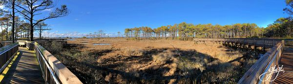 Pano taken with iPhone...