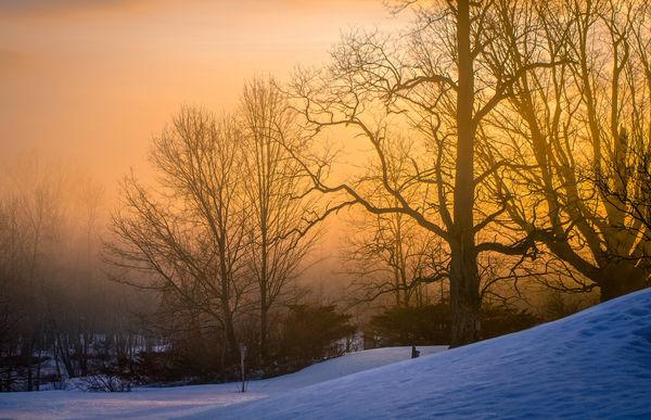 Blue Hour meets Sun and ground Fog...