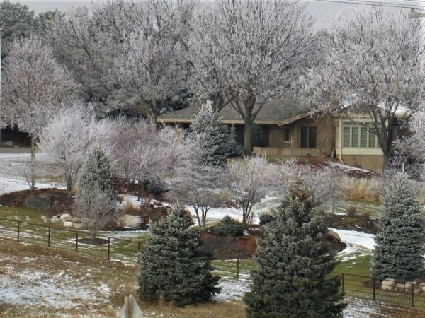 Acreage in the frost...