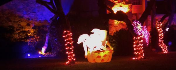A few friendly spooks....