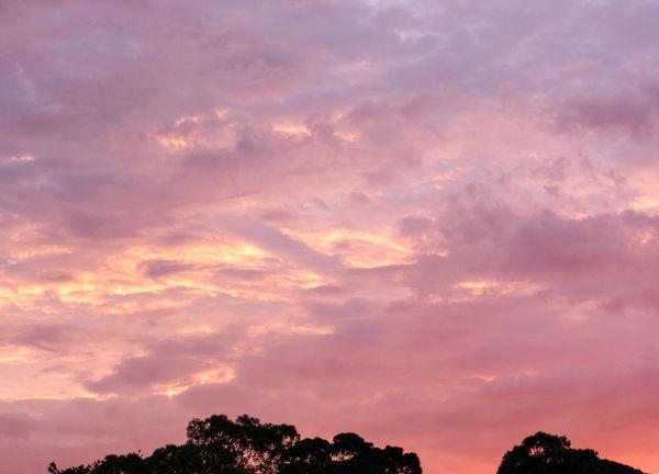 Dawn...